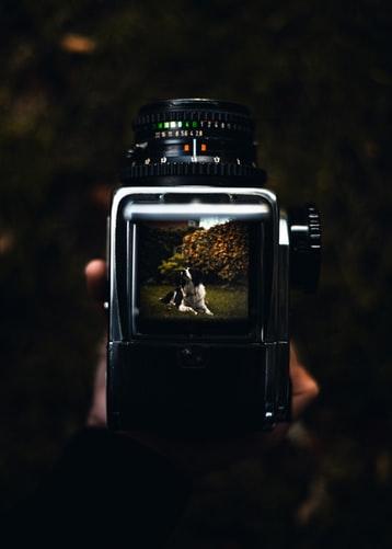 ペット カメラ